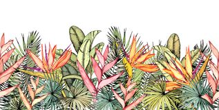 Free Endless Horizontal Border With Tropical Palm Leaves, Heliconia And Strelitzia Flowers. Royalty Free Stock Photography - 184461427
