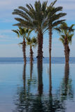 Endless Infinity Pool Royalty Free Stock Images
