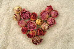 Endless love. Heart of red roses on the sand Stock Photos