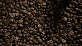 Endless mixing roasted coffee beans stock footage