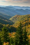 Colorful fall leaves dotting the endless mountains in the Smoky Mountains. royalty free stock images
