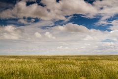Endless plains of Etosha National Park Royalty Free Stock Photography