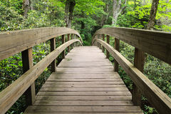 Tanawha Trail Bridge Blue Ridge Parkway NC Royalty Free Stock Images