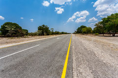 Endless road with blue sky. Endless road in Namibia, Caprivi Game Park, with blue sky Royalty Free Stock Photo