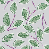 Endless rose pattern Stock Image