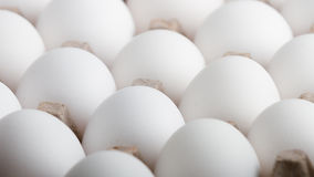 Endless rows of eggs up close Royalty Free Stock Image