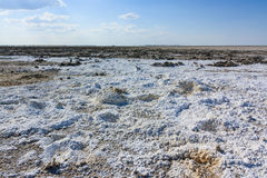 Endless salt pan Botswana, Kubu Island, Africa. Minerals from prehistoric lake Royalty Free Stock Photos