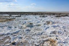 Endless salt pan Botswana, Kubu Island, Africa Royalty Free Stock Photos
