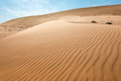 Endless sand waves on sand dunes of Namib Desert Stock Images