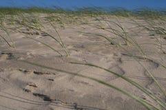 Endless sandy beach Germany Royalty Free Stock Image