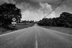 Endless straight road running through the forest with scenery of grass field and trees with cumulus clouds and sky. In black and white scene. Death background Royalty Free Stock Photography