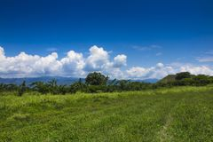 Landscape of valle del cauca en colombia. Endless sugar cane plantation,where I am working. in the distance the Andes,landscape of valle del cauca en royalty free stock photos