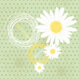 Endless summer background with polka dots , camomiles and heart of camomiles Royalty Free Stock Photos