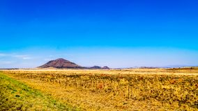 Endless wide open landscape of the semi desert Karoo Region in Free State and Eastern Cape. Provinces in South Africa under blue sky Stock Photo