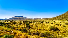 Endless wide open landscape of the semi desert Karoo Region in Free State and Eastern Cape. Provinces in South Africa under blue sky Royalty Free Stock Photography