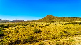 Endless wide open landscape of the semi desert Karoo Region in Free State and Eastern Cape. Provinces in South Africa under blue sky Stock Images