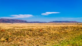 Endless wide open landscape of the semi desert Karoo Region in Free State and Eastern Cape. Provinces in South Africa under blue sky Royalty Free Stock Photo