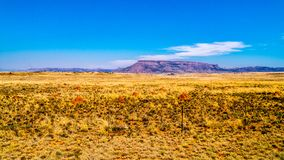 Endless wide open landscape of the semi desert Karoo Region in Free State and Eastern Cape. Provinces in South Africa under blue sky Stock Image