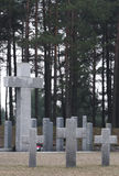 Endloser Friedhof in Polen Lizenzfreie Stockfotos
