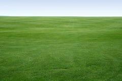 Endloser Rasen Stockfotografie