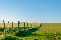Endloser Zaun durch üppige Landschaft im Sommer Stockfoto