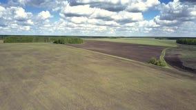 Endloses countryscape mit Feldern und Wäldern unter nettem Himmel stock video