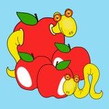 Endlosschraube und Apfel Stockfotografie
