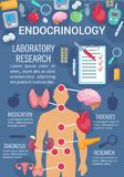 Endocrinology poster with human endocrine system. Endocrinology medicine poster of human endocrine system anatomy diagram. Thyroid gland, pancreas and stock illustration
