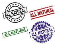 Endommagé texturisé TOUS LES joints NATURELS de timbre illustration libre de droits