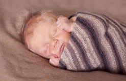 Endormi rapide Images libres de droits