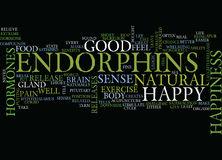 Endorphins The Happy Hormone Text Background  Word Cloud Concept Stock Images