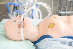 Endotracheal Tube Attached To Dummy Royalty Free Stock Photo