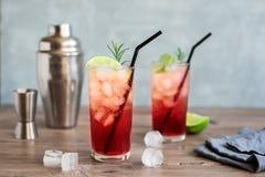 Endrino Gin Fizz Cocktail imágenes de archivo libres de regalías