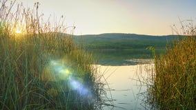 Endroit parfait pour pêcher sur un lac secret Photos stock