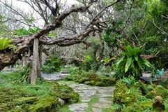Endroit pour la méditation dans le jardin Photos libres de droits