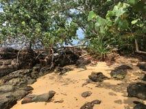 Endroit reculé sur la plage photo stock