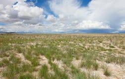 Endroit sans vie de désert Photos libres de droits