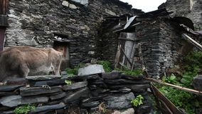 Endroit touristique étonnant Ushguli situé au pied de Shkhara, un des plus hauts sommets caucasiens, la communauté de clips vidéos