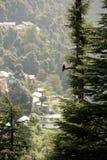 Endroit touristique de Himalyans Photographie stock