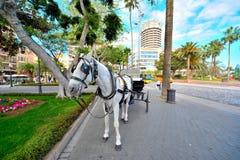 Endroit touristique et commercial dans mamie Canaria Photos libres de droits