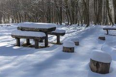 Endroit vide de repos profondément pendant l'hiver de forêt sur un d ensoleillé froid photos stock