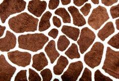 Endroits de giraffe Photos libres de droits