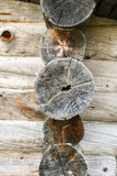 The ends of the logs Stock Image