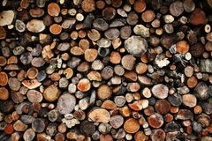 Ends of stacked logs Royalty Free Stock Photo
