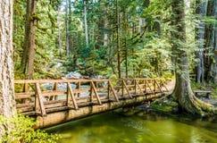 Endstück im Wald Stockfotos