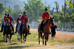 Endurance Riding Royalty Free Stock Photos