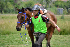 Endurance Riding Stock Photos