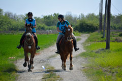 Endurance Riding Royalty Free Stock Images