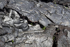 Endureça o fluxo de lava foto de stock