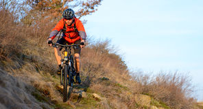 Enduro Cyclist Riding the Mountain Bike on the Rocky Trail. Extreme Sport Concept. Space for Text. Stock Photography